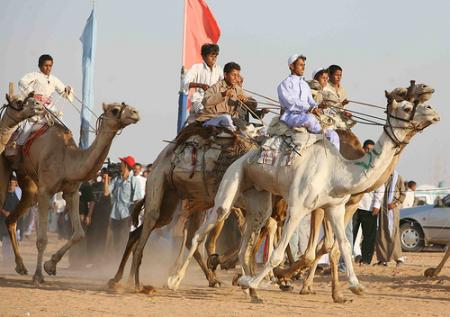 carrera-camello.jpg